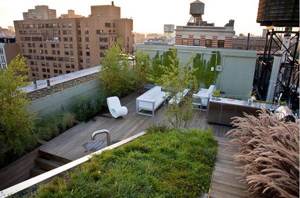 每个人都想要一个美丽的屋顶花园