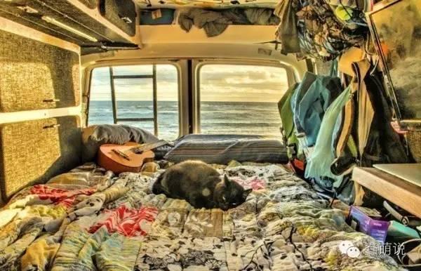 你会为了自己心爱的宠物辞掉工作来一场说走就走的旅行吗?-蠢萌说