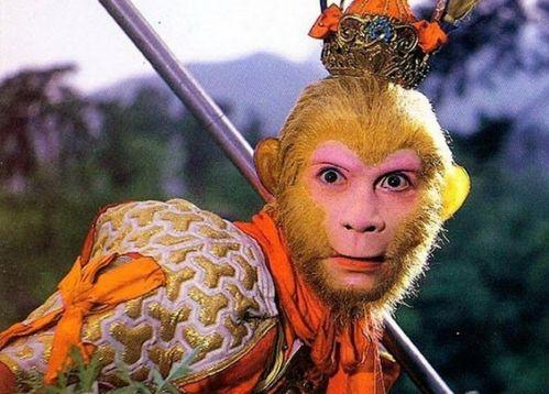 人为什么会长猴子_揭秘:名著《西游记》中孙悟空为何是猴子?