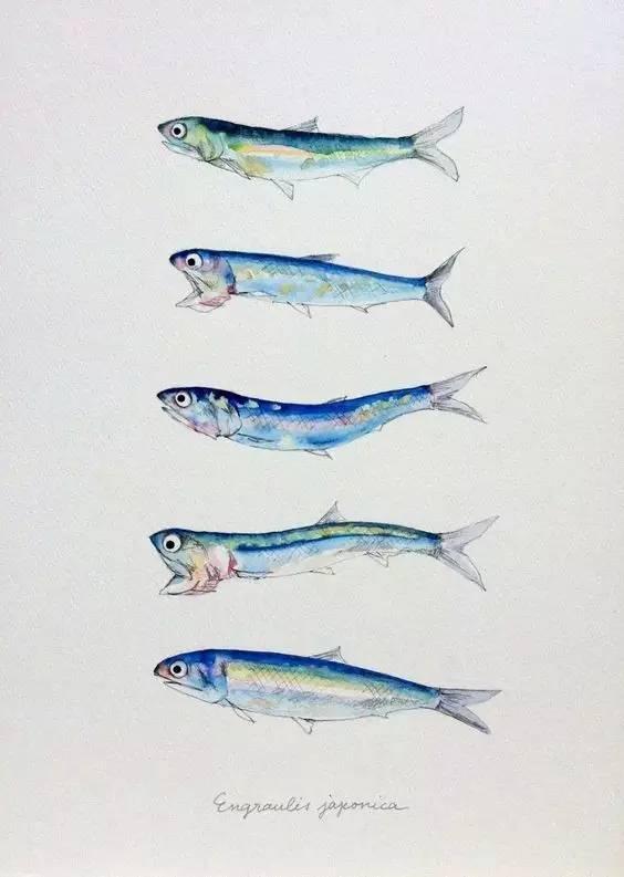你以为鱼只在水里 在画里也能活