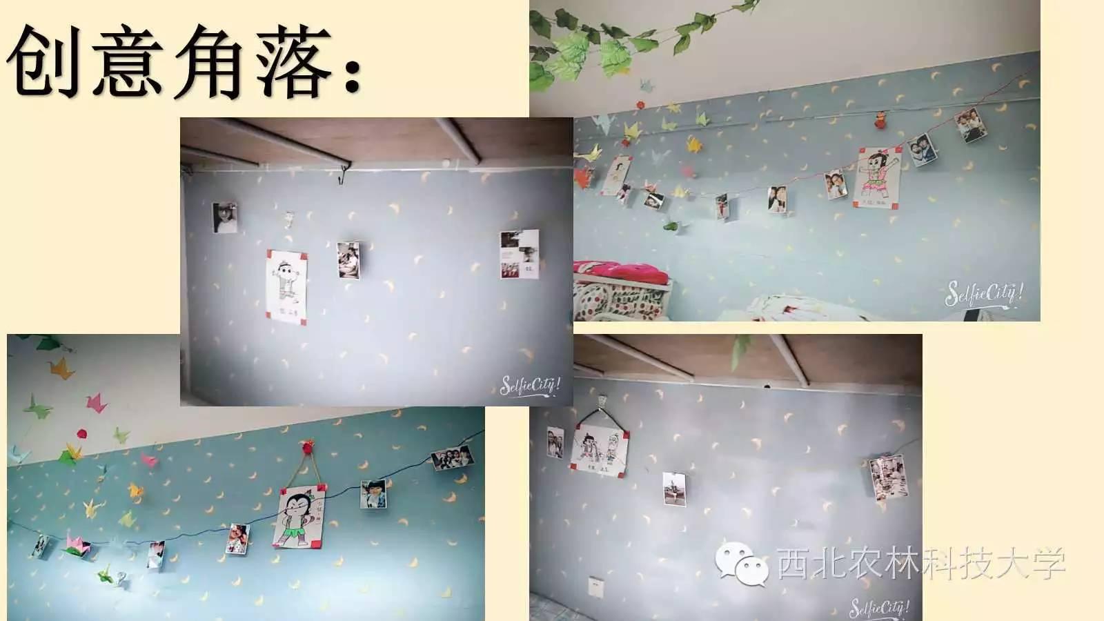 西农最美创意宿舍图片
