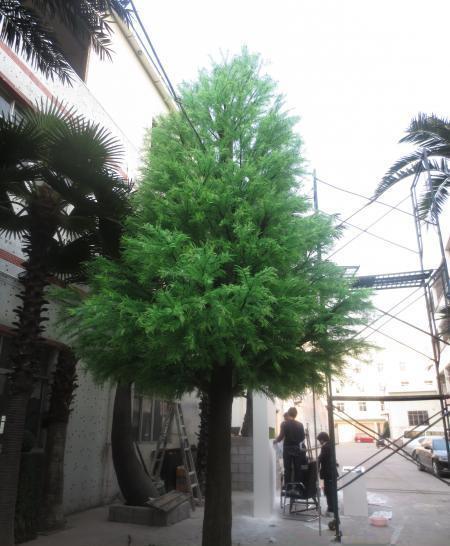 仿真大王椰子树_大王椰子花_大王椰子不是椰子