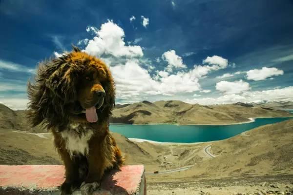 攻略|去西藏旅游出发前必看的13条攻略不看从成都到桂林沿途自驾游攻略图片