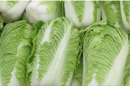 挑选大白菜要看是晒秋菜还是腌酸菜,腌酸菜就要选择薄帮的,叶子