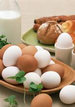 胖子吃什么食物减肥图片