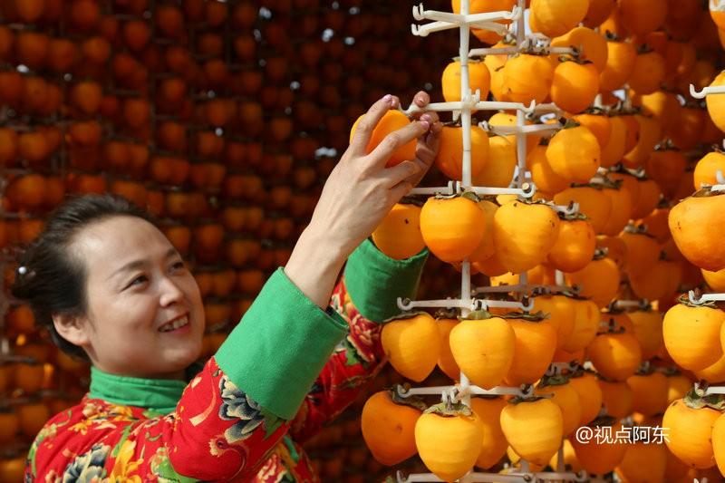 柿饼姑姑:一个庄里女人的甜蜜梦想 - 视点阿东 - 视点阿东