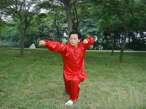 基本中国拳法pdf