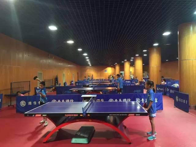 乒乓球运动对益处的孩子三角洲v益处训练营图片