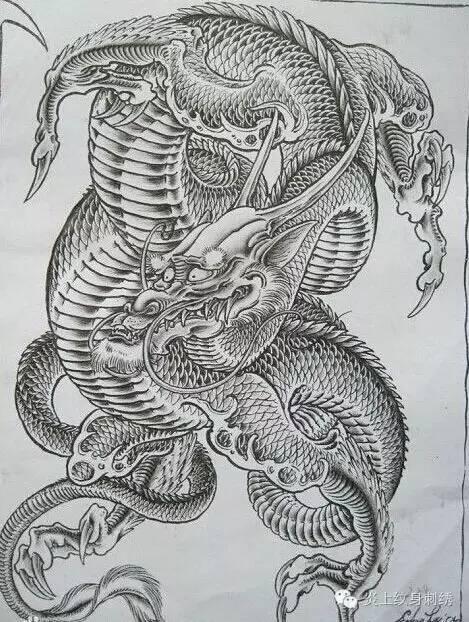 几款好看的龙纹身手稿图片