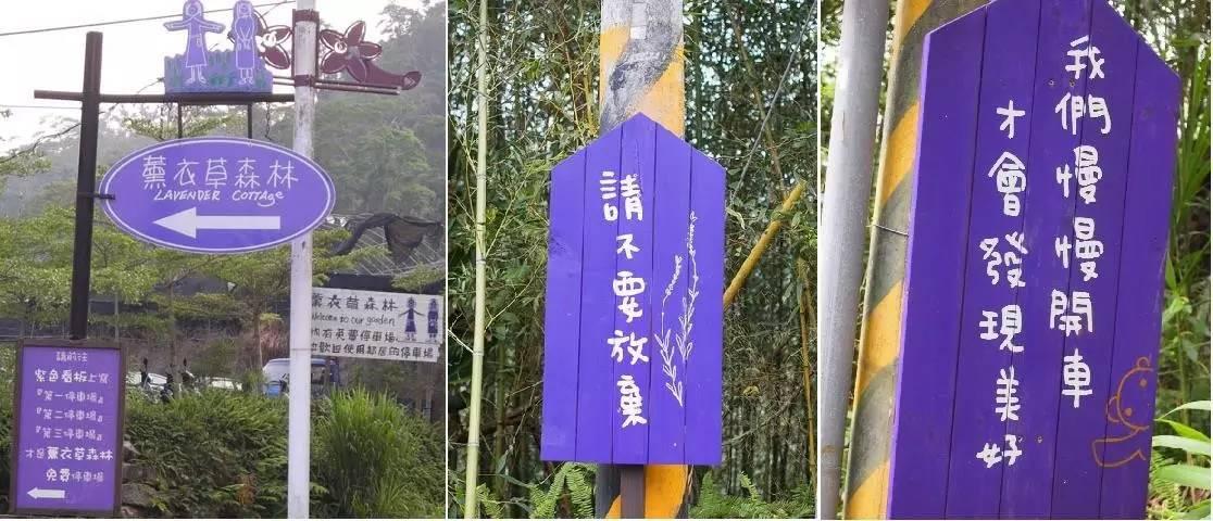 【台湾旅游】薰衣草森林-让人看见梦想的幸福园地图片