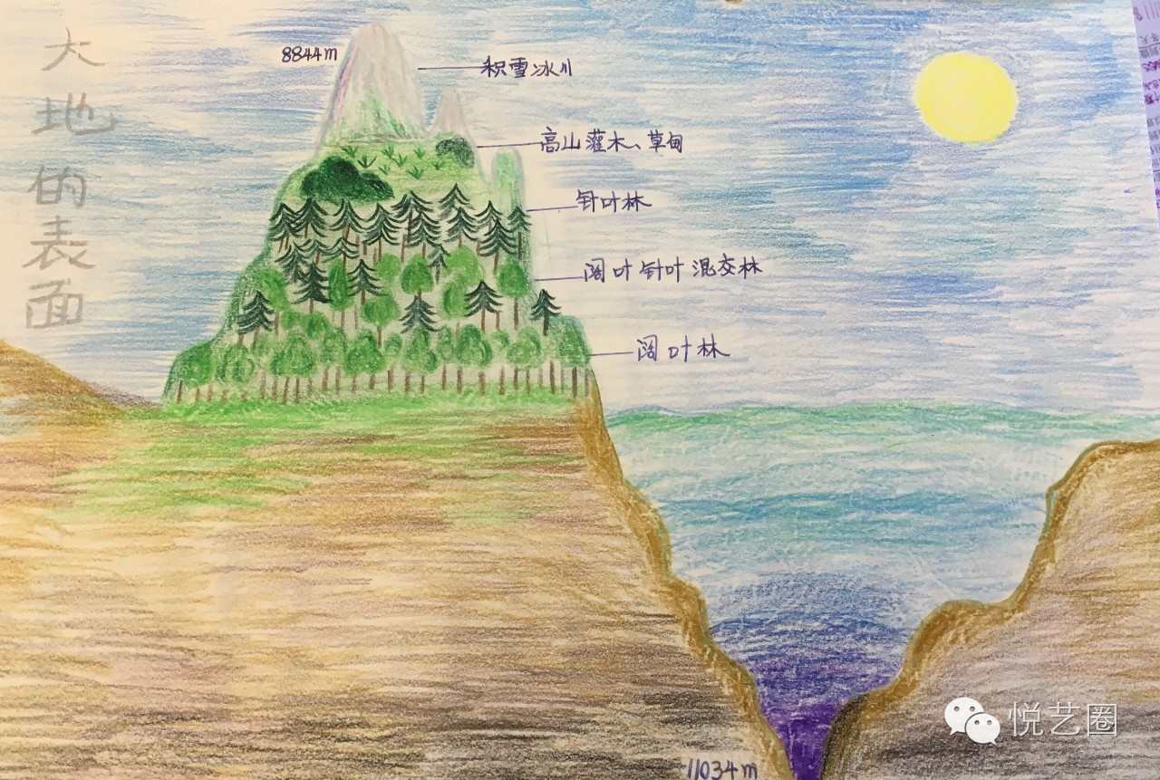 感动哭了!中国这群小学生手绘的课本竟这么美