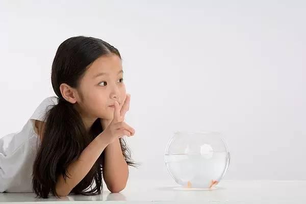 12岁以前的孩子,除了学习,培养这9个习惯更重要 - 多彩童年 - 好望角