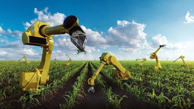 图片:高科技农业