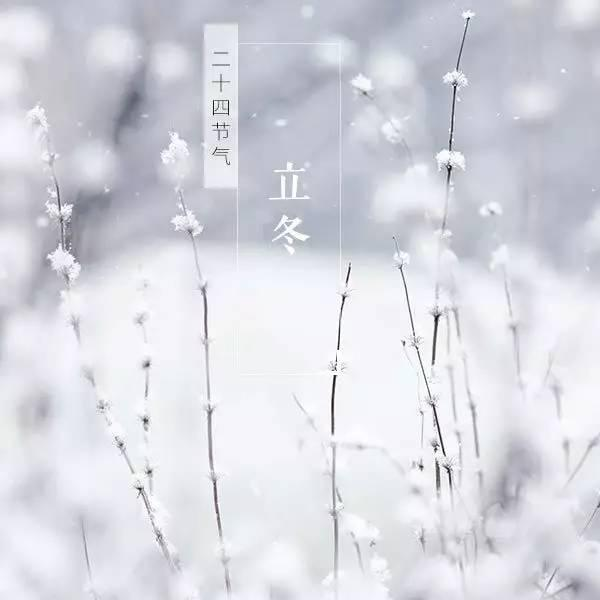 立冬是24节气的第19个节气.我国古时民间习惯以立冬为冬季的开始.