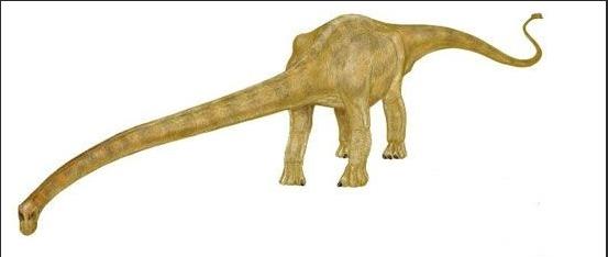 有史以来最大的陆生动物 -拇指头条 最著名恐龙前20名排行榜大盘点