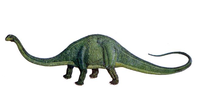 步骤恐龙-最著名头条前20名排行榜大v步骤.同花顺模拟炒股操作拇指图片