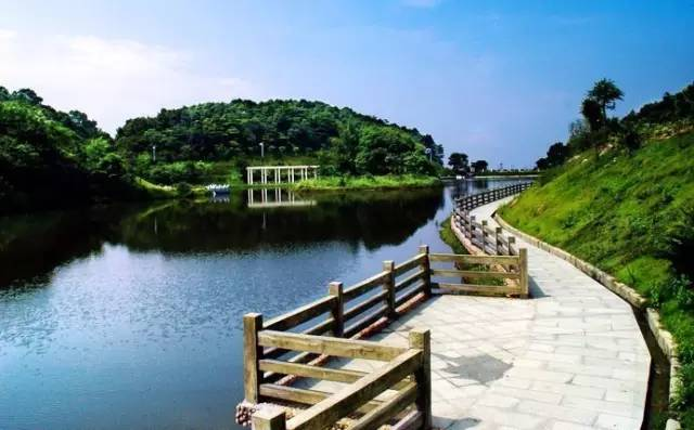独具岭南特色的国家级森林公园,成为广州人的生态旅游休闲度假胜地.图片