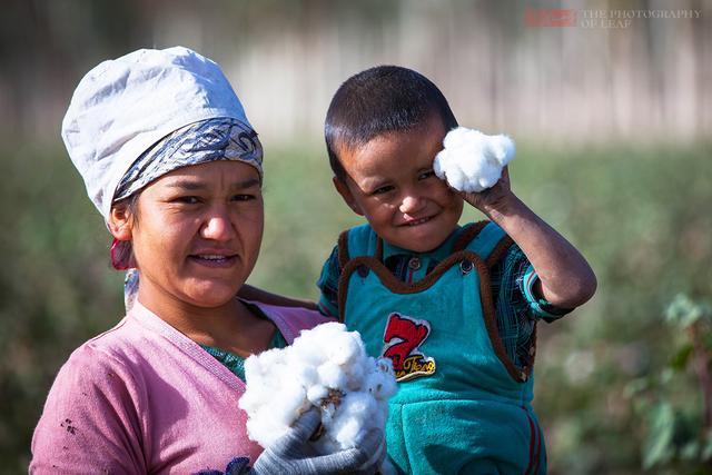 在新疆枣子随便吃,但不可以带走,让人很感动 - 寒残一叶 - 寒残一叶的博客