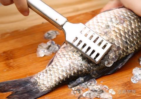 号各异的刮鱼鳞工具,例如小锯齿的不锈钢工具、粗刷子、毛刷子等.