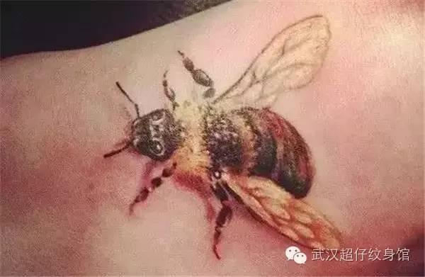 """""""两只小蜜蜂啊,飞在花丛中啊,飞呀……""""这是我们儿时常唱的歌谣.图片"""