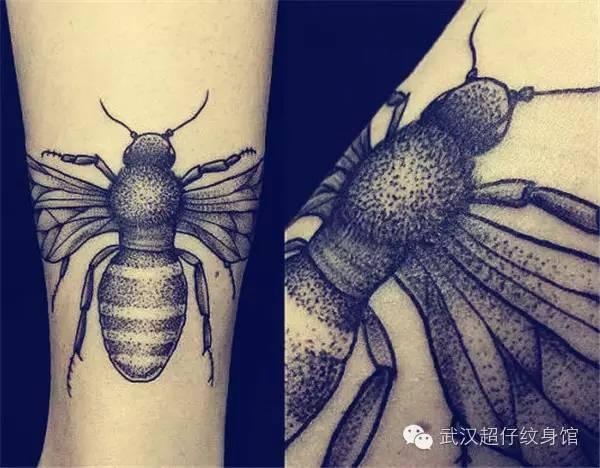 蜜蜂写实手绘图