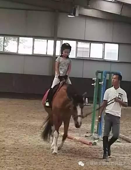 添添骑马记-四人体育搜狐皮划艇视频教学图片