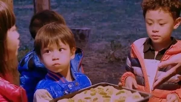 有一种爱情叫田亮叶一茜,有一种姐弟叫森碗森蝶