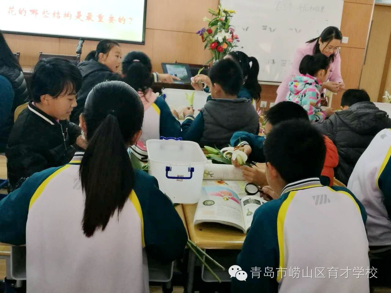 青岛市初中生物教学中生物科学史教育的研究2017会考初中答案天津图片