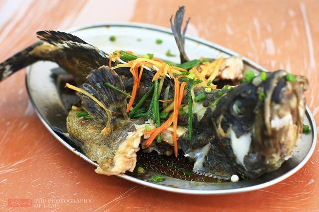 来三亚吃海鲜,记住这6点放心大胆吃 - 寒残一叶 - 寒残一叶的博客