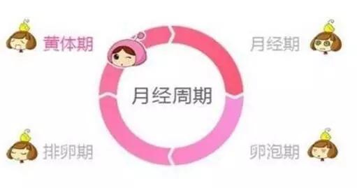 备孕的时候 月经不调怎么办