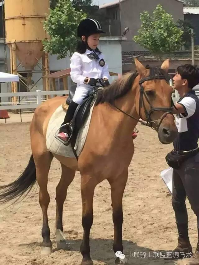 【校花】视频也骑马-搜狐体育正当防卫2滑翔机飞不过图片