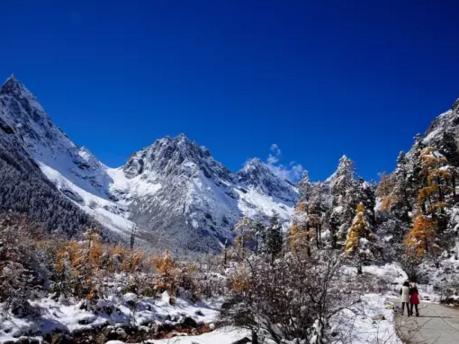 川西这些中央雪都堆满了,赶忙约起去耍雪!