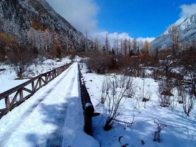 川西这些地方雪都堆满了,赶紧约起去耍雪!