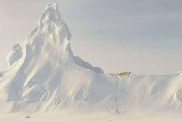 2016年最美的照片都在这了,国家地理杂志年度旅行照片,带你领略绝美地球 - 浪浪云 - 仰望星空