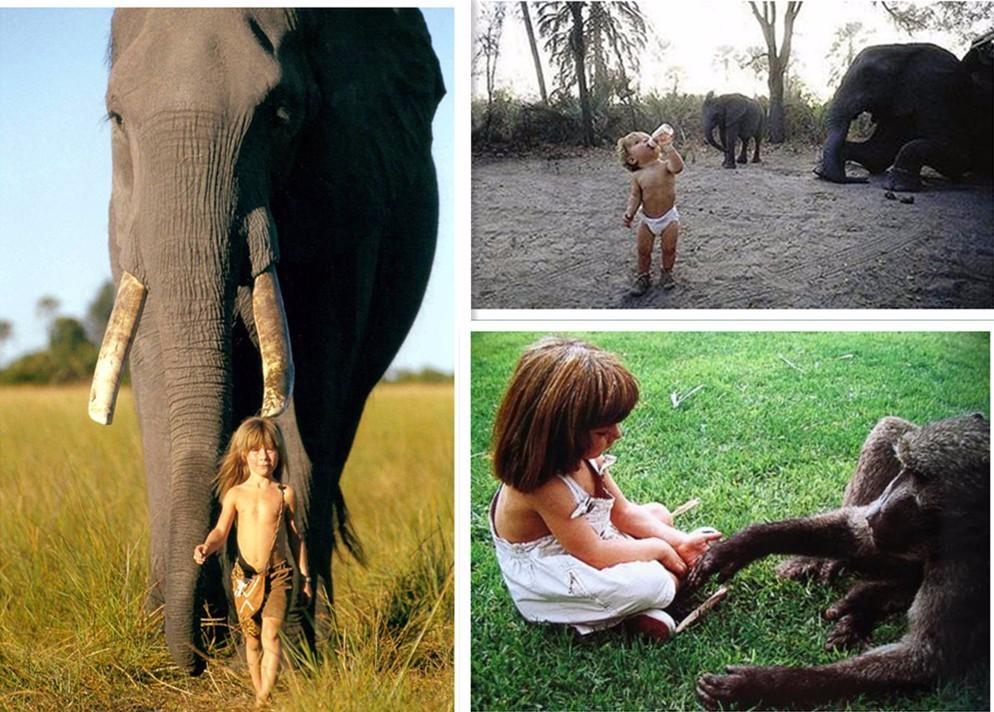 蒂皮和动物们在一起