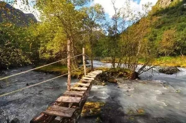 小木桥 图片
