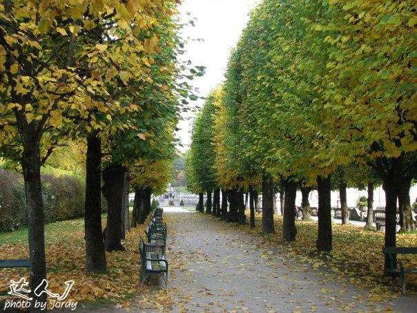 梦中的伊甸园——萨尔茨堡 - 达人J - 达人J · 365乐游日记