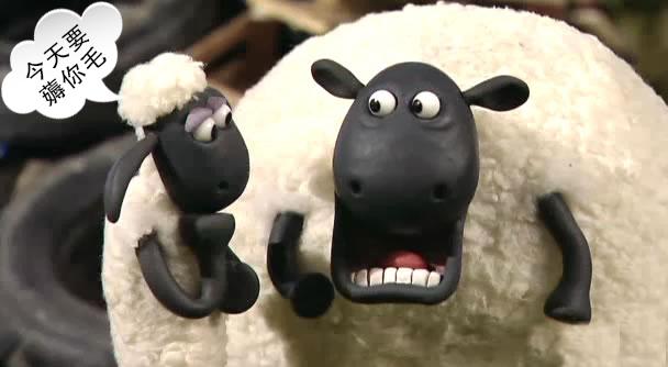 高清欧美撸撸图_50万本金撸羊毛,忙了一年还亏了!