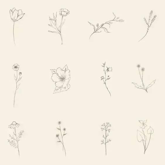 色彩的明暗交替 就犹如画上去般自然 清新花朵   文艺小纹身 低调的