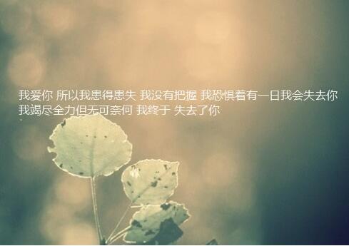 浪漫温馨的表白句子唯美配图