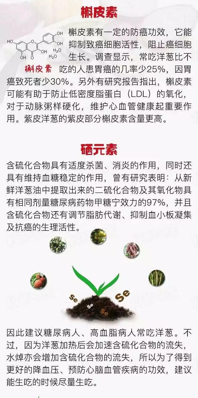 冬天吃洋葱,身上暖烘烘! - 风帆页页 - 风帆页页博客