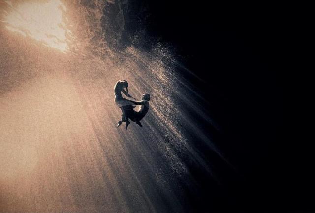 天才摄影师失踪十年,竟带它们回来,惊艳了世人 - 浪浪云 - 仰望星空