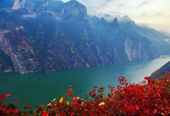 十届中国长江三峡巫山国际红叶节于本月18号正式开幕,今年巫山红叶节图片