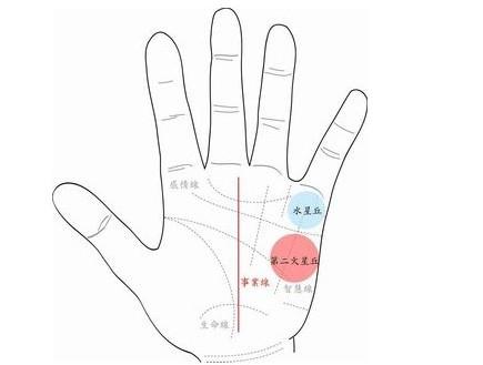 手相面相 手相智慧线看你从事什么工作好 图文 手相看你智慧线手纹