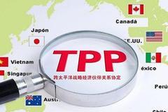 """越南因TPP""""报复""""日本?撕毁100多亿的""""样板工程"""