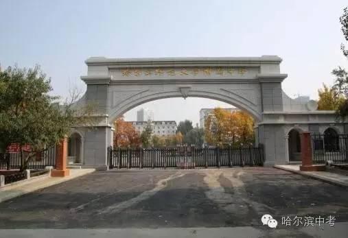 2016国际高中考入清华北大人数排行榜,哈尔滨两