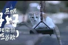 五月天《好好》MV首播,林志玲徐若瑄助阵!想把你写成一首歌,超级催泪!