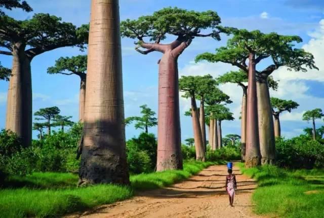 旅游资讯丨25个媲美童话世界的旅行地,你最想带谁一起去