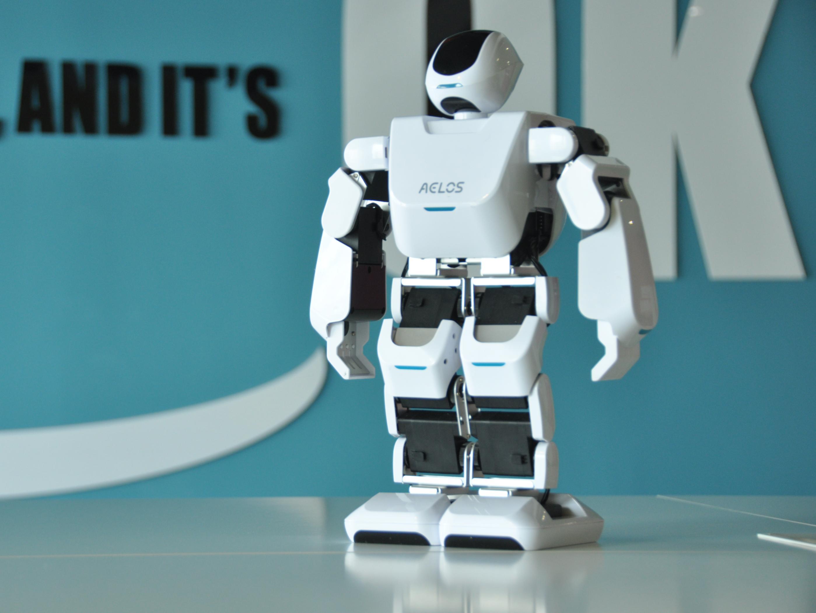 LKK人型机器人