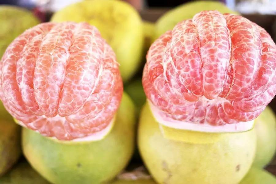 谁才是冬天里的水果之王? - 风帆页页 - 风帆页页博客